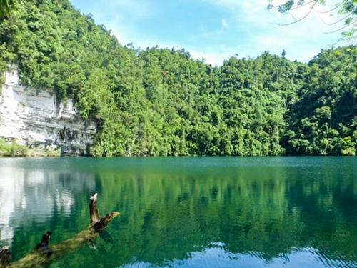 lake surrounded by lush trees at lake danao, ormoc